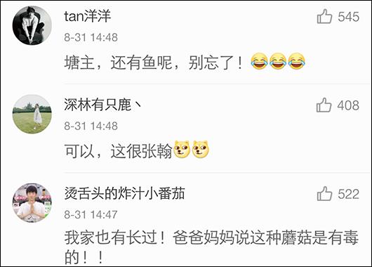 深圳公安官微提醒张翰蘑菇有毒 盘点那些年被警察蜀黍盯上的明星