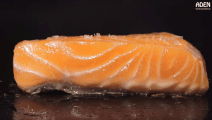 这一餐花了我148美金,牛排生蚝三文鱼,日本铁板烧餐厅实拍