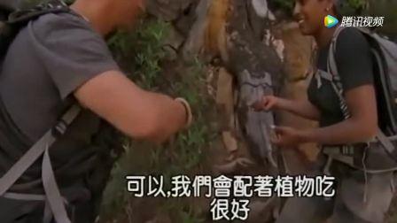 贝爷带谭蓉霍尔荒野求生, 找到只死松鼠竟然把她吓得半死