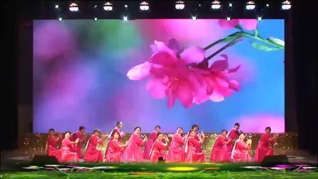 董文华《春天的故事》 打开 广场舞 金太阳舞蹈队《春天的故事》