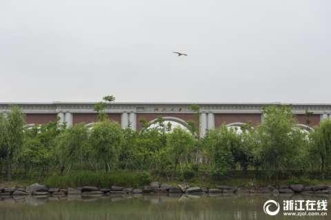 浙江大学紫金港校区终于要有新大门了