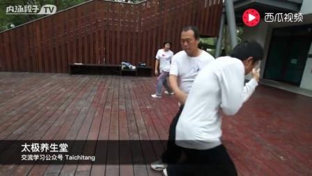 """视频教学: 太极拳训练中的关键步聚""""落胯转腰与立圆单推手"""""""