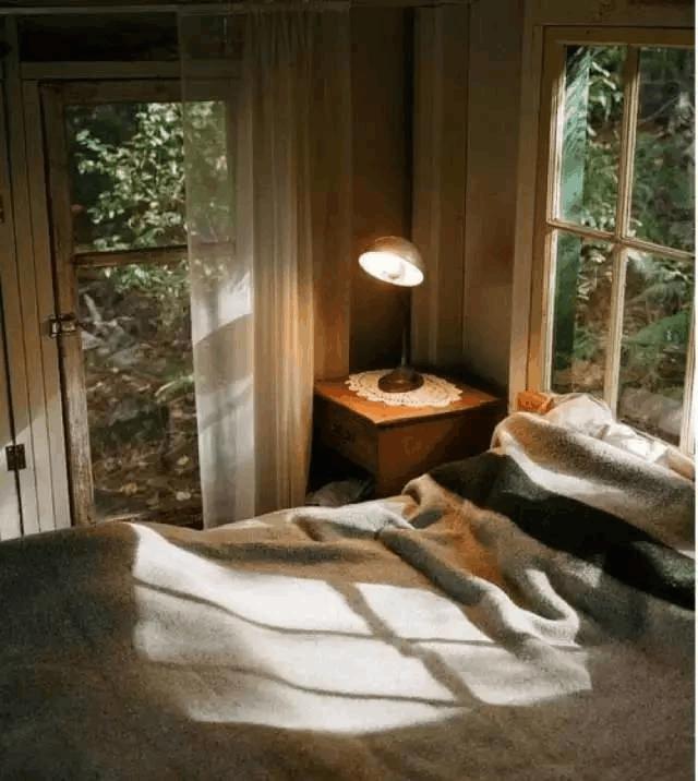 自从媳妇把卧室布置成森林风格