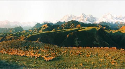 新疆旅游名城, 中国四线城市: 新疆哈密
