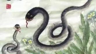 老先生算: 大金蛇的后30年, 不要再躲了, 不接不吉利