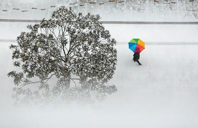 中东部多地降大到暴雪 专家释疑今冬北京初雪为何还不来