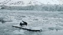 钢琴家在冰山前弹奏世界名曲,冰山的一部分竟然塌了!