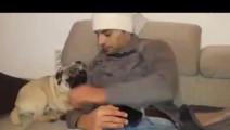 狗狗挨着主人睡觉,主人往旁边挪了挪,接下来它的反应太萌了