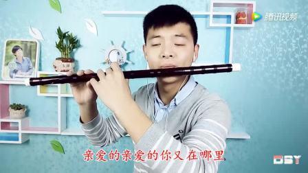 新光艺笛子独奏西海情歌
