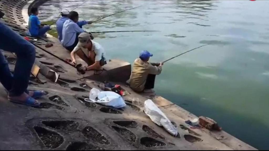 春季钓鱼技巧海杆当手竿钓串钩用手竿鱼漂可以不