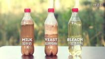 15个疯狂的可乐试验 壮观的可乐喷泉