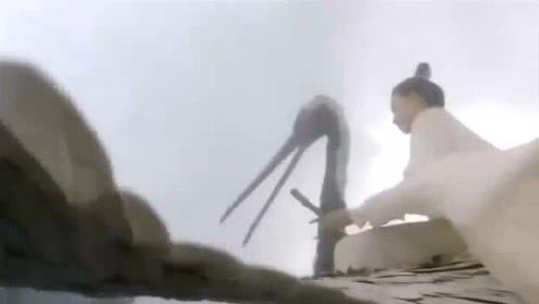新仙鹤神针 梁朝伟掉下悬崖之时被骑仙鹤的美女梅艳芳所救