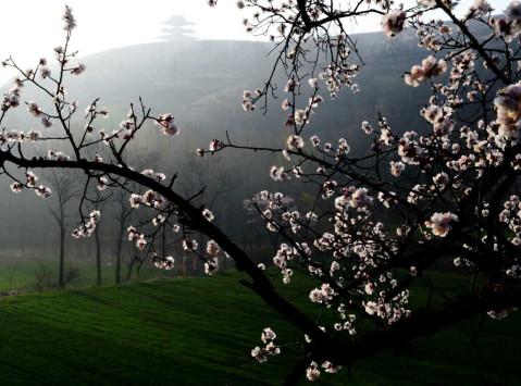 尖山风景区位于郑州市西南45公里,新密市区西北25公里处的伏羲山区