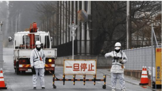 """变异动物满街跑, 沿海""""狼鱼""""到处游  日本福岛核泄漏已去过9年:"""