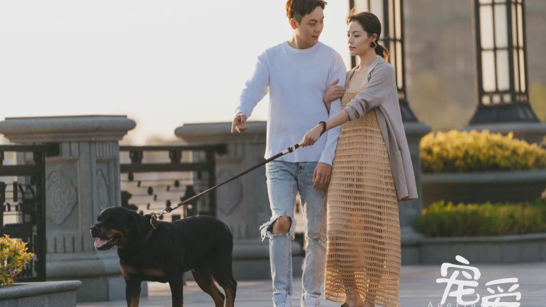 電影《寵愛》詮釋了寵物對人的意義, 你能被這部電影打動嗎?