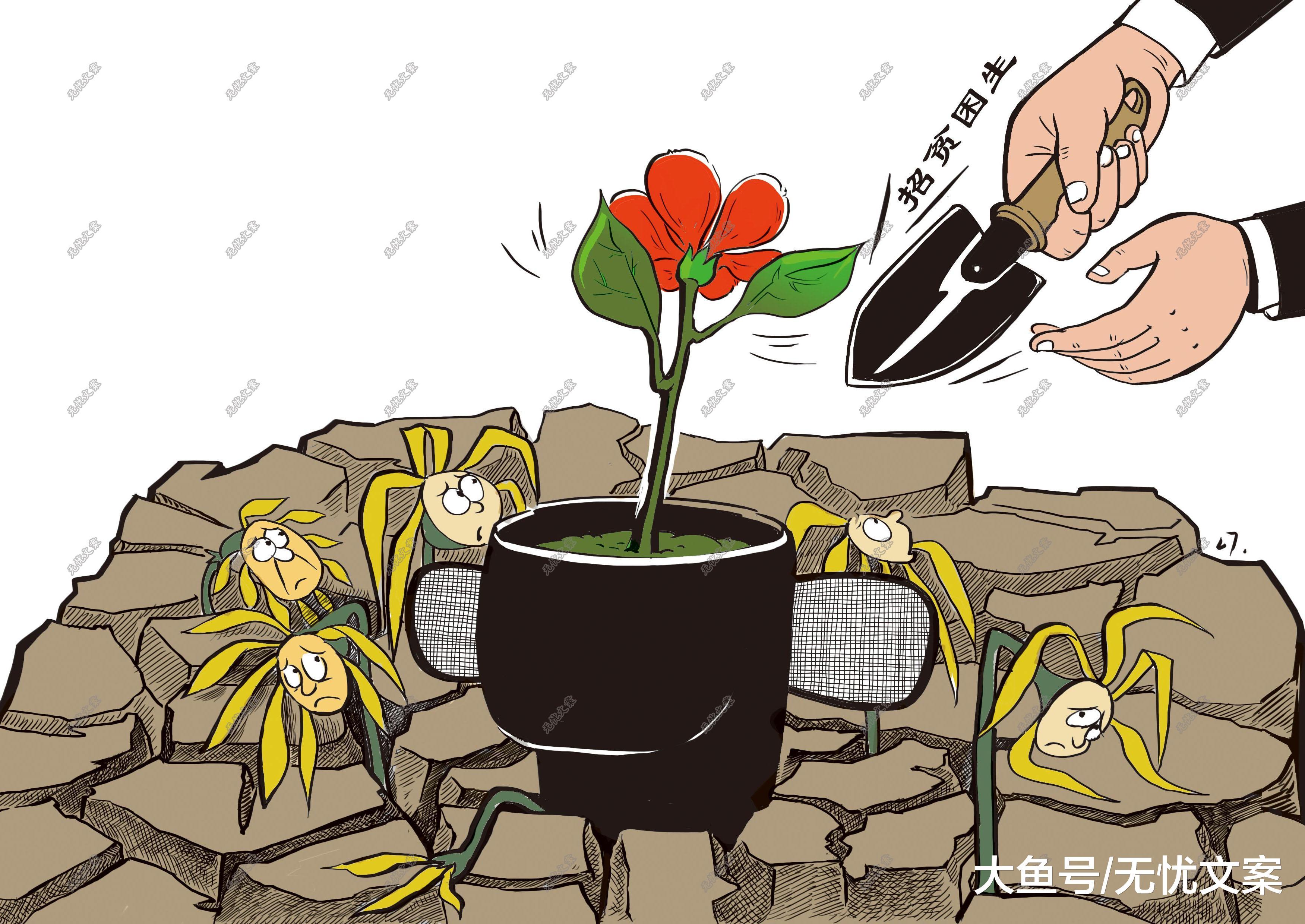 生源最好的省份是京 沪 苏 浙 川