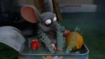 爆笑虫子: 为什么受伤的总是倒霉鼠