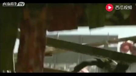 死亡飞车: 这部电影凶残极致!看的人欲血喷张碾压一切好莱坞!