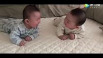 双胞胎一看对方就咔咔大笑,可爱炸了