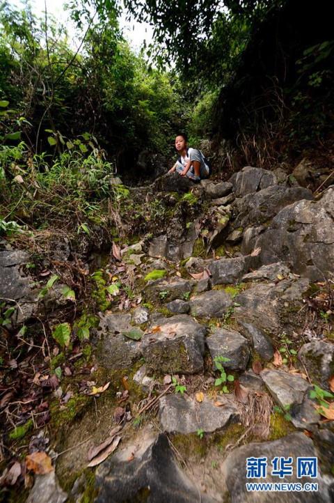 9月4日,李建文走在上学的路上,脚下的山坳里云雾缭绕.