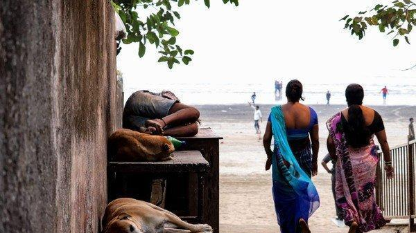 """专家警告: 未来印度将""""不宜人居&rdquo 印度50 6度高温热死百人,"""