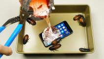 把iphone7放入有蟑螂的液态熔铝中,会发生什么?