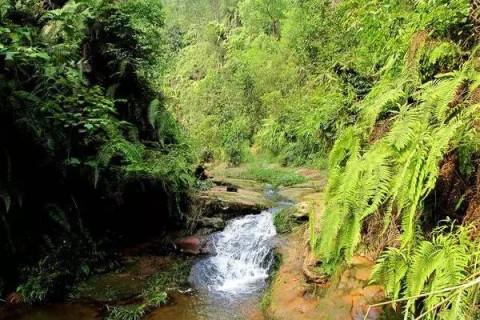 青山岭位于富顺县万寿镇境内,距县城约17公里处,有青山山脉亘横.
