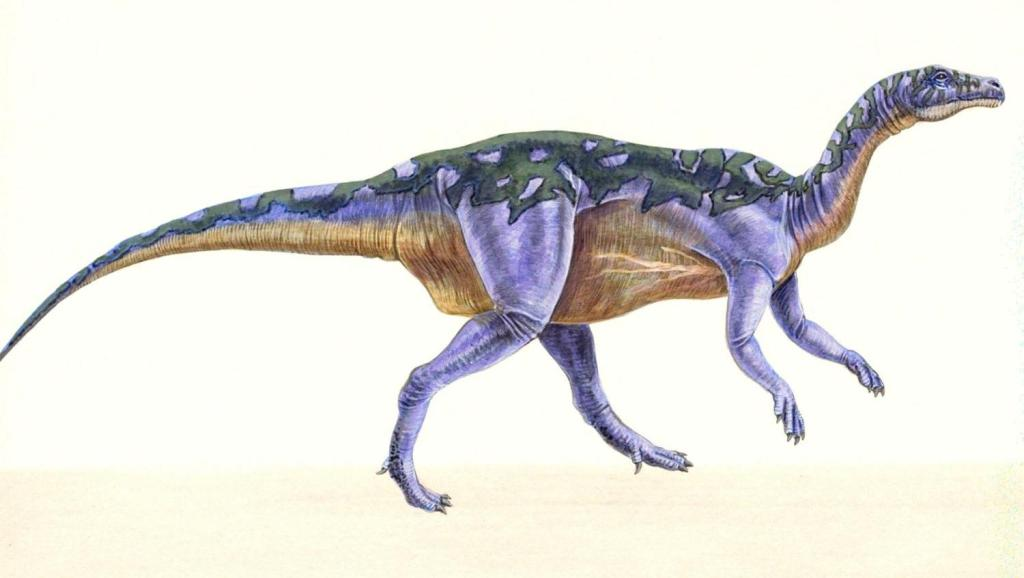 科技小制作恐龙