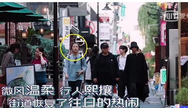 """有一种""""明星路人""""叫张子枫, 日本游玩被拍进综艺, 观众都看懵了"""