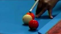 台球史上无法复制的几杆球,只能用诡异来形容
