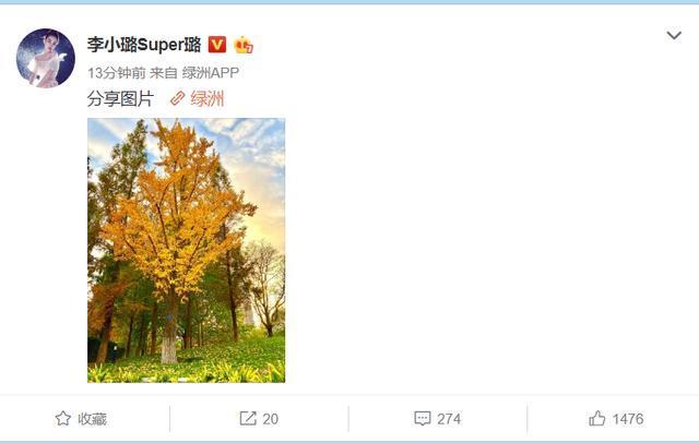 李小璐官宣离婚后首晒动态, 晒出一张照片后遭网友调侃: 绿到发黄
