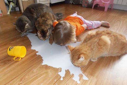 小孩看动物图片