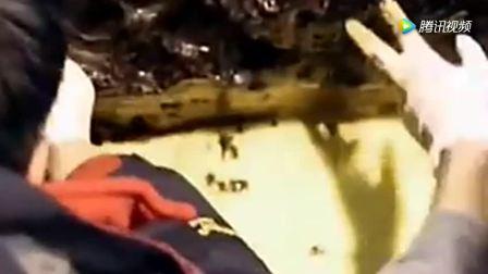 考古专家挖掘千年古棺材, 掀开的那一刻发现满满的金饼!