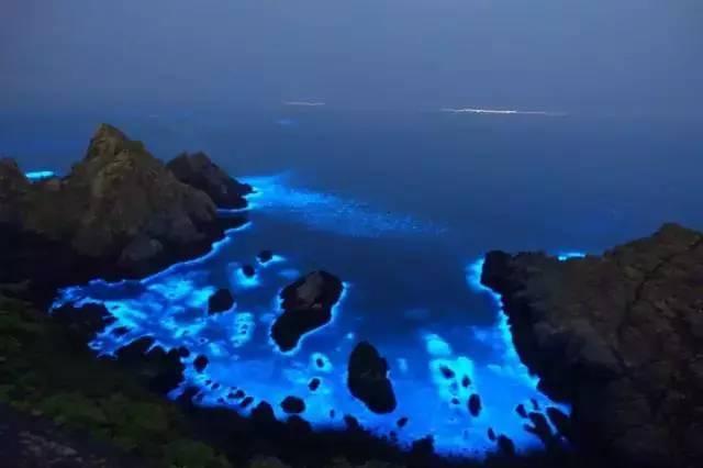 """旅游 正文  马尔代夫的荧光海也被称为""""蓝眼泪"""" 由于这片水域有许多"""""""