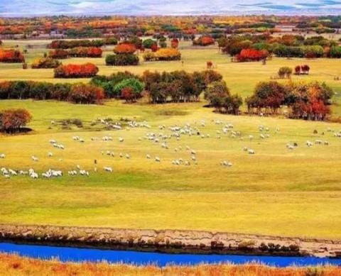十一推荐 内蒙古最好的秋天在这里