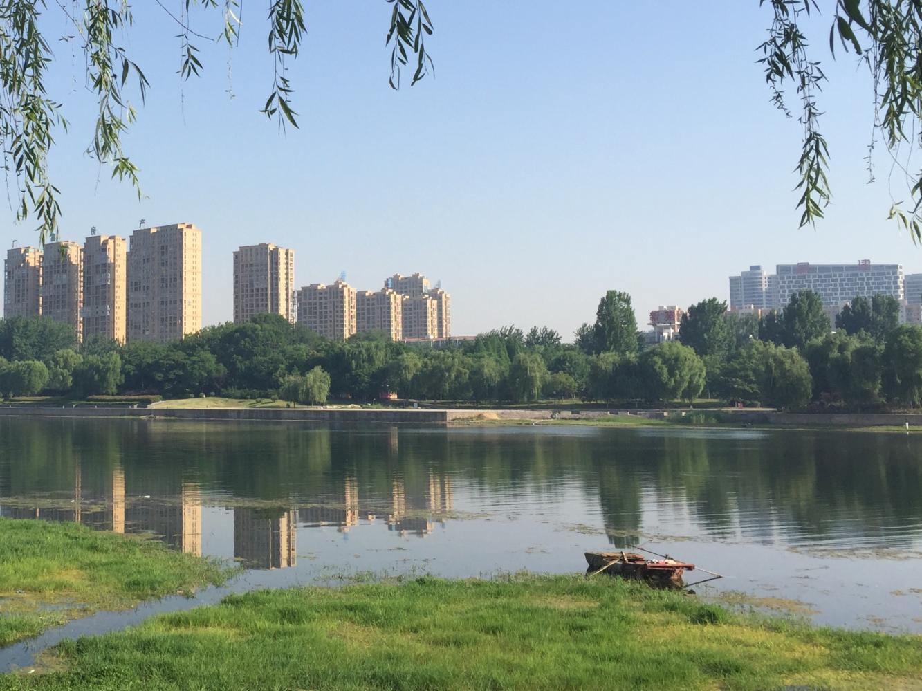 游遍漯河之 沙澧风景区