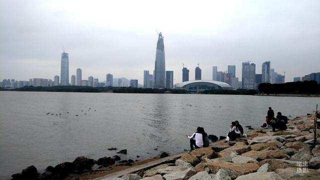 可沿深圳湾公园步行栈道前往,也可坐地铁2号线到后海站下车即到.