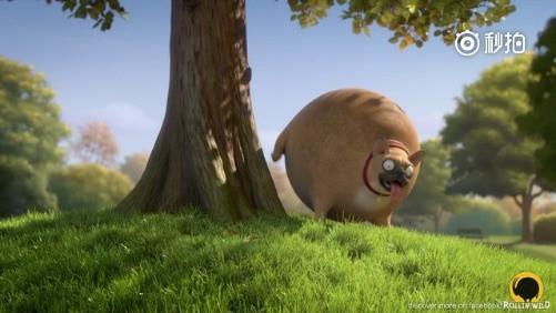 打开 打开 幼儿园, 家长孩子们各种搞怪动物装 打开 各地动物园,那些