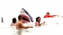 歪果仁用逼真的鲨鱼道具恶搞游客,妹子当场被吓晕!