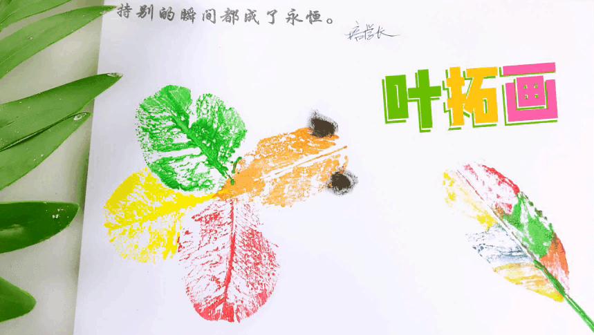 寒假有手工作业吗?不妨做一副叶拓画吧,简单又美丽,老师很满意