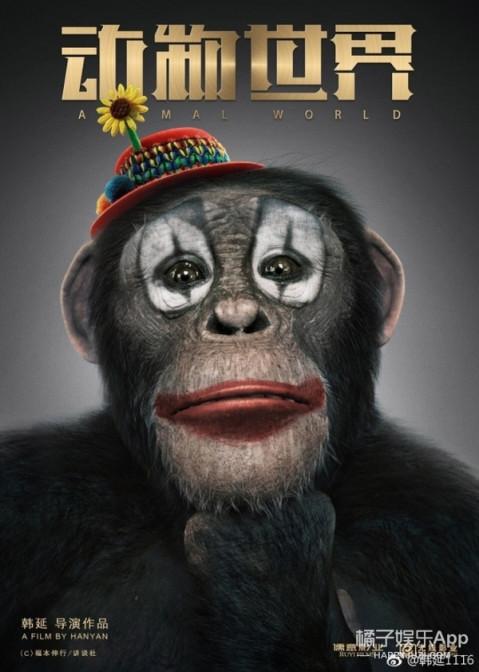 新锐导演,大咖演员,黄金班底, 李易峰《动物世界》能成为中国电影工业