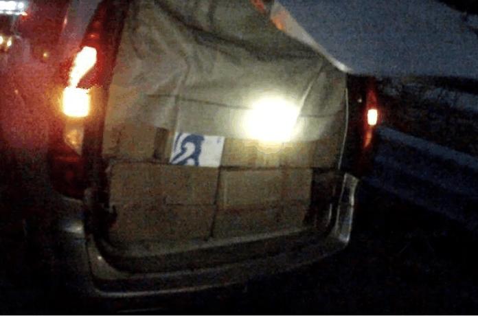司机在车中熟睡, 交警检查发现内藏有上百只野生动物