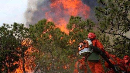 清明祭扫引发森林大火600多人全力扑救