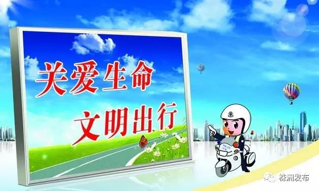 """28687122或@""""株洲交警""""微博、微信举报.-旅游 公安 交通 中车"""