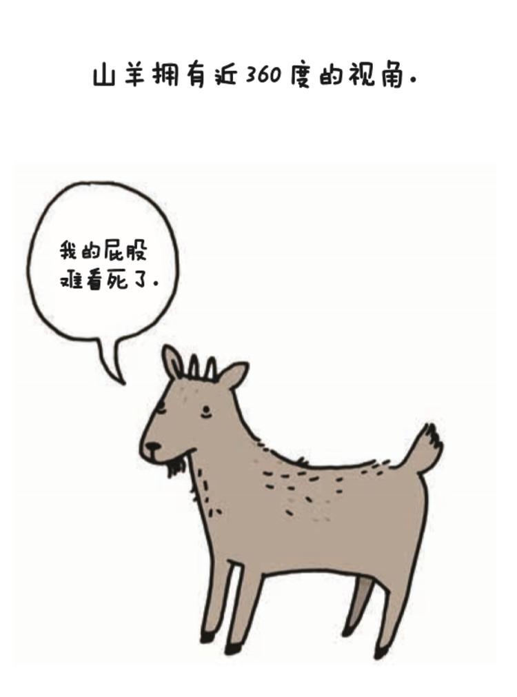 那些关于动物们的冷知识, 她用插画讲述了出来