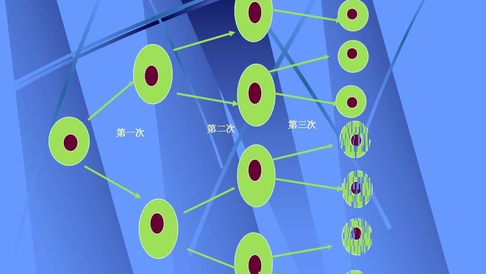 乘方电路算法流程图