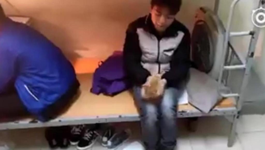 当舍友们同意这位网友养猫之后,他就变成这样了