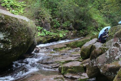 """六盘山国家森林公园–小南川.虽说是""""川""""实际上是一条峡谷."""