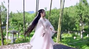 古装美女 mv 经典影视舞蹈集锦 佳人舞 [ 一]-320x240