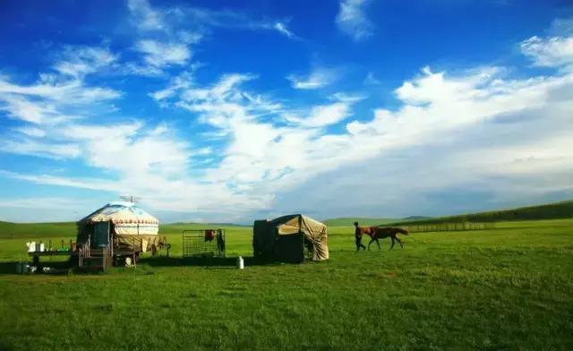 在这里遇见湛蓝透明的天空,朵朵白云下是一片广袤无垠的绿色草原.